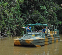 Board an amphibious World War 2 Army Duck for a unique rainforest tour on both land and water, where your guide will identify and explain fascinating plants and wildlife as you pass by.