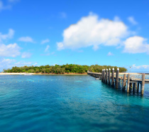 There are a number of different day tour options for visiting Green Island
