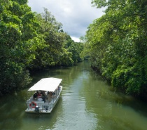 We visit the Majestic Daintree River for a 1 hour river cruise.