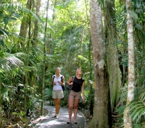 Jumrum Walking trail Kuranda