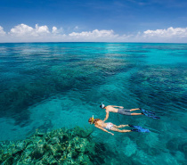 Snorkeling with Great Adventures
