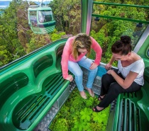 Travel to the funky rainforest village of Kuranda on the magical Skyrail Rainforest Cableway and soar across the rainforest canopy.