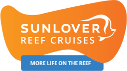 Sunlover Moore Reef Tour