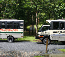 Daintree, Cape Tribulation & 4WD Bloomfield Track WITH Billy Tea Safaris