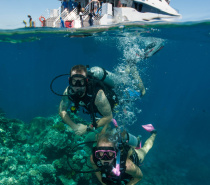 Scuba diving - Certified and Introductory
