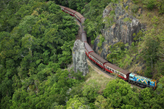 Hotel Transfers | Train 9.50am + Skyrail 3.45pm | 5 hours in Kuranda.