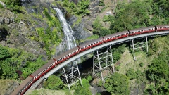 Hotel Transfers | Train 8.50am + Skyrail 3.45pm | 5 hours in Kuranda