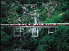 Train up 8:50am + Skyrail Down 1:45pm | 3 hours in Kuranda