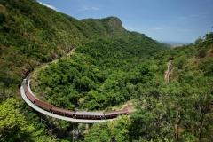 Train up 8:50am + Skyrail Down 2:45pm | 4 hours in Kuranda