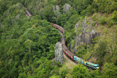 Self Drive | Train 9.50am + Skyrail 1.30pm | 2 hours in Kuranda