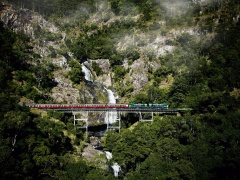 Self Drive | Train 9.50am + Skyrail 3.30pm | 4 hours in Kuranda