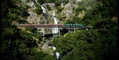 Skyrail up 9:00am + Train down 2:00pm | 4 hours in Kuranda
