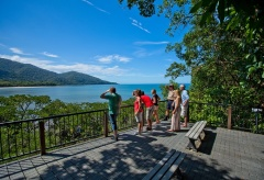 Cape Tribulation & Daintree Rainforest