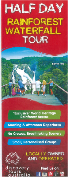 Small Group Exclusive Half Day Rainforest/Waterfall Four Wheel Drive Adventure