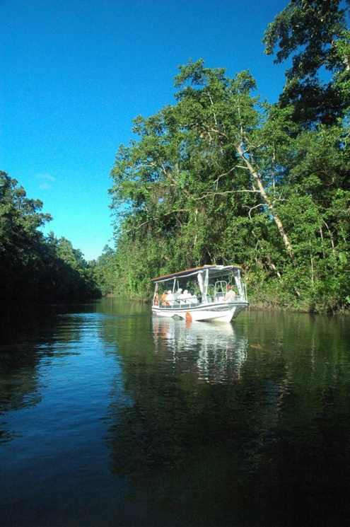 Join us for a great Daintree Wildlife Cruise.