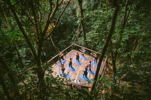 DAINTREE ECOLODGE ACTIVITIES