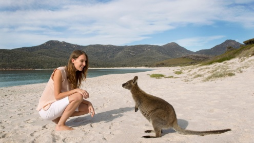 Wineglass Bay & Freycinet Day Tours from Hobart