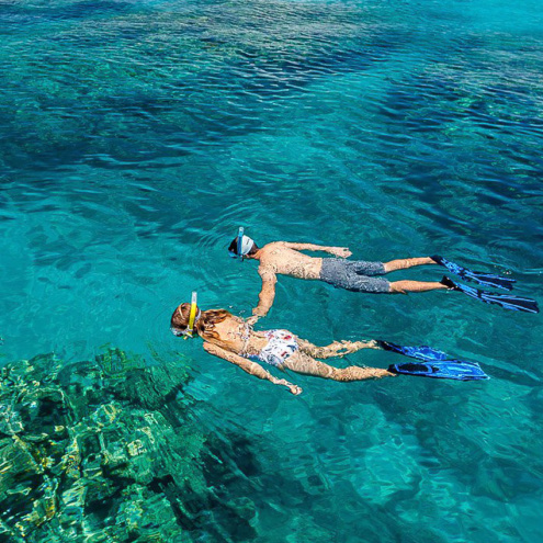 Great Adventures Outer Reef Tour from Cairns