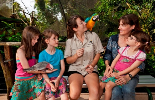 Bus to Birdworld Kuranda