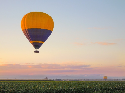 Early morning 30 Minute Hot Air Balloon Flight Adventure: