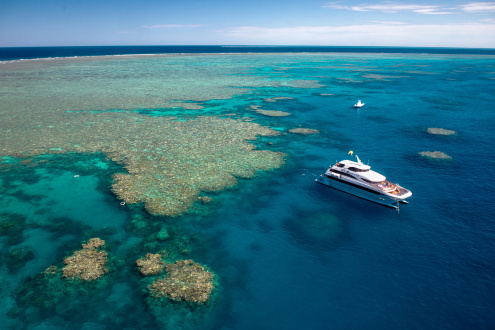 The Evolution Great Barrier Reef Experience