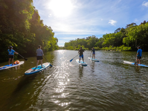 Kuranda Rainforest Paddleboarding Half Day Tour